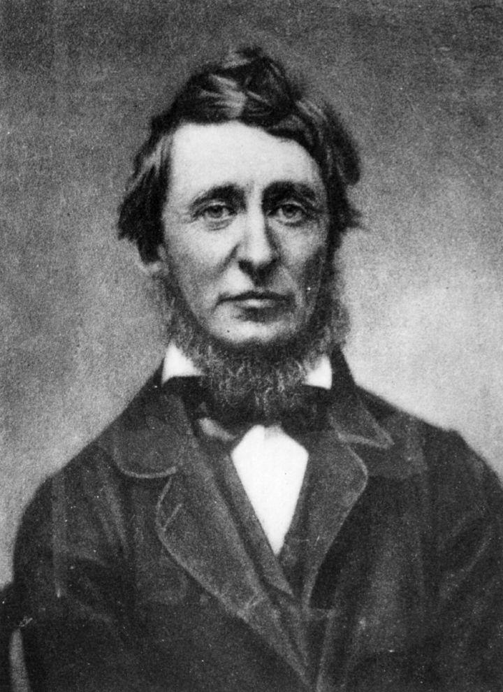 Henry David Thoreau (1817 - 1862) foto Hulton Archive/Getty Images
