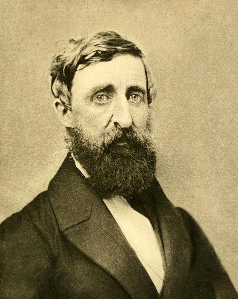 477px-Henry_David_Thoreau_-_Dunshee_ambrotpe_1861