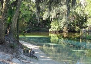 l'Alafia River a Lithia Springs